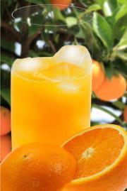 Mallorca-Orangen, Bestellshop , Frisch gepresster Orangensaft aus Orangen von Mallorca